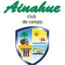 logo ainahue